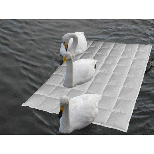 Sommertraum Snowgoose®