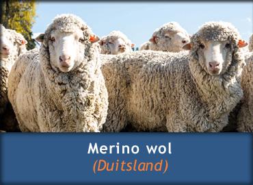 Schapenwollen dekbed - Merino