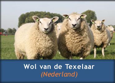 Schapenwollen dekbed - Texelaar